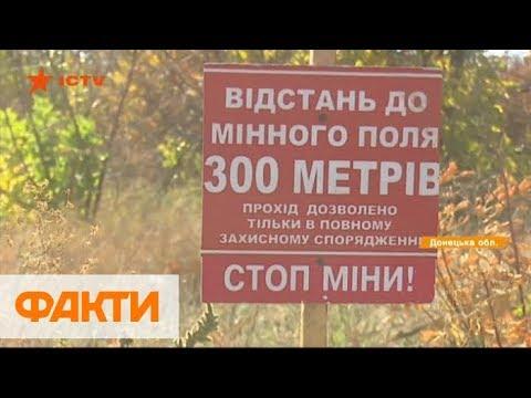 Самый опасный в мире: сколько нужно времени и денег на разминирование Донбасса
