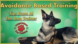 Avoidance Based Training- Tips from Al the Dog Trainer