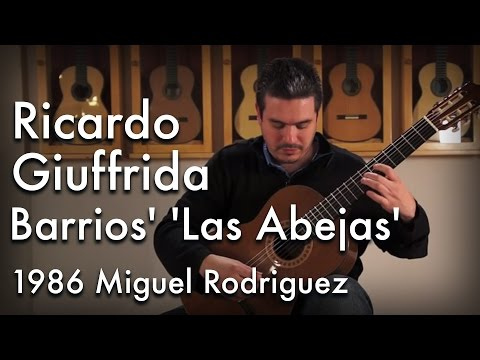 Barrios' 'Las Abejas' played by Ricardo Giuffrida