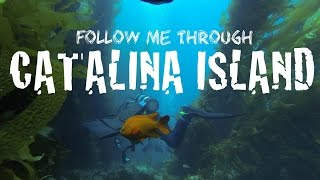 GoPro Catalina | Diving Santa Catalina Island - Amazing Travel Video