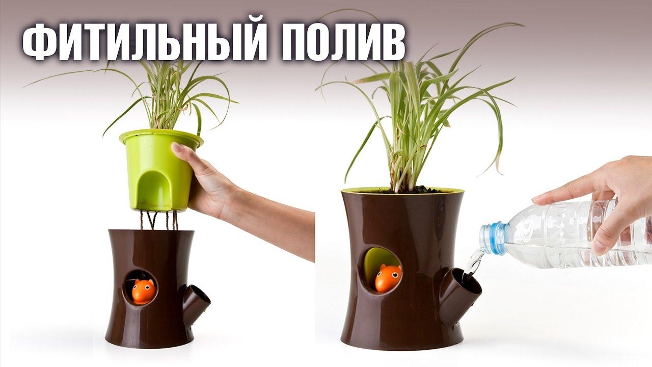 Фитильный полив растений как сделать