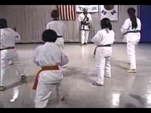 Episode 26: Tang Soo Do Class with Young Beginner Students - Forms, Kicks, Combination Techniques Image 1