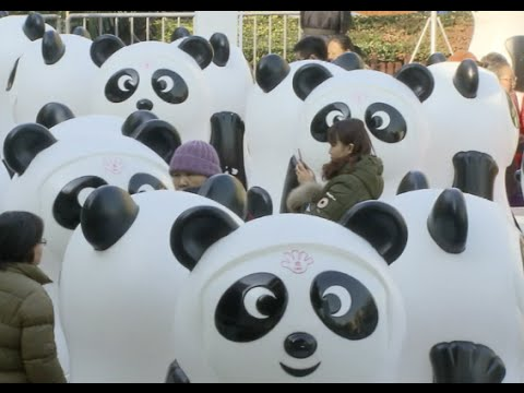 800 Panda Bins Displayed in Shanghai to Promote Clothes Recycling