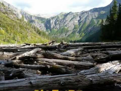 -Nature Dreams- Stone Eagle Pitt