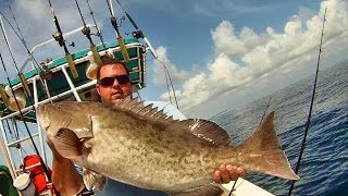 TRENDING FUN: Gag Grouper Opening Day Offshore Fishing in Florida Mahi-Mahi, Mangrove Snapper and Mo