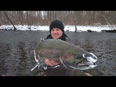 STEELHEAD FISHING SALMON RIVER 2015 GOPRO 4