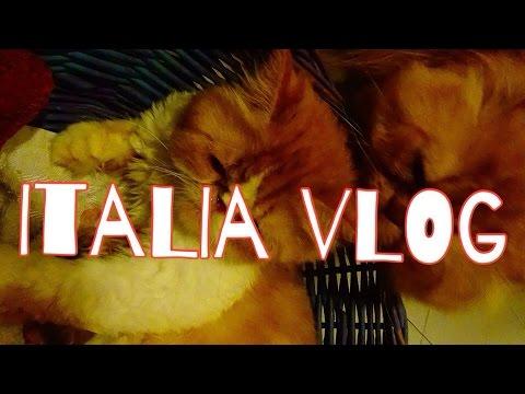VLOG КОТ ПОМОГАЕТ РОЖАТЬ КОШКЕ ITALIA PARTO DI GATTA