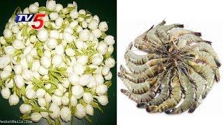 ఆక్వా రైతులకు కోలుకోలేని దెబ్బ | ఆందోళనలో మల్లె రైతులు | Annapurna