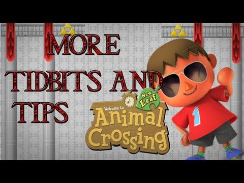 Tidbits & Tips: Animal Crossing New Leaf: Villager House Placement, Tanning, and Fast PWP