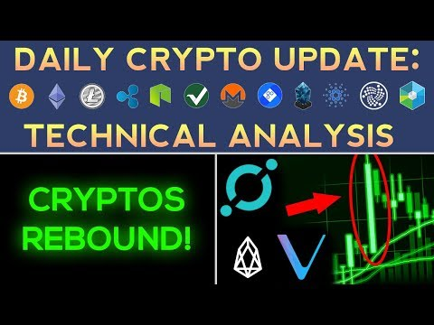 Cryptos Rebound: VeChain, EOS, ICON Up Over 30%  (1/20/18) Daily Update + Technical Analysis