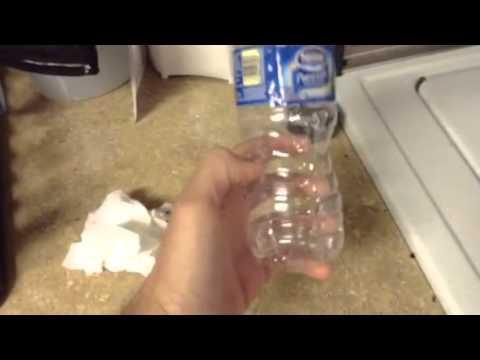 Best DIY protein skimmer - tank update!