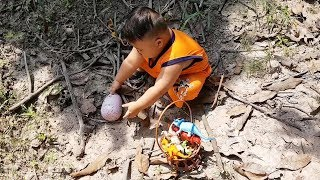 Trò Chơi Đi Săn Trứng Chim Hatchimals ❤ ChiChi ToysReview TV ❤ Đồ Chơi Trẻ Em
