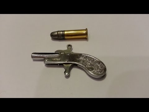 SHOOTING THE WORLDS SMALLEST GUN