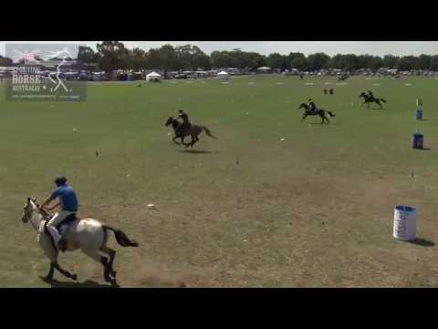 FLAG AND BARREL RACE SPORTING HORSE AUSTRALIA