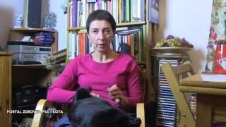 (6.10 MB) Wychowanie kotów | Czego nauczyć kota? Mp3