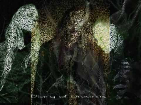 Diary Of Dreams - Now This Is Human
