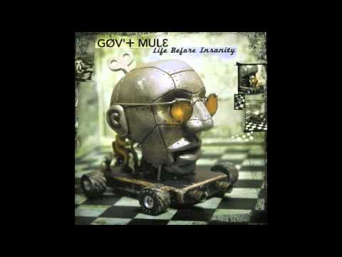 Govt Mule - Life Before Insanity