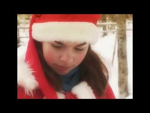 Reno & Papá Noel - Los secretos de renos de Santa Claus - Laponia Finlandia Rovaniemi