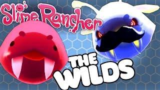 THE WILD UPGRADES - Slime Rancher Ogden's Wild Update Gameplay #2