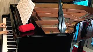 Sonata in G Minor Hob XVI/44 ~ J.Haydn