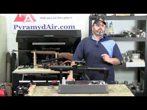 Crosman M4-177 Multi Pump Pellet gun Review