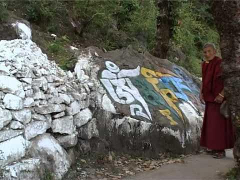 Dharamsala Dalai Lama's Cora