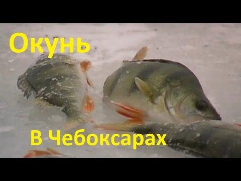 рыболовный сайт на чебоксарах