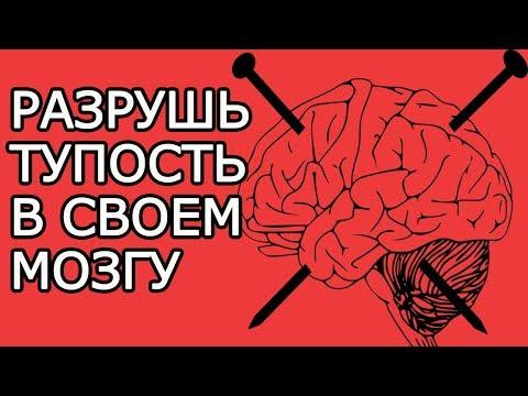 Вбей эти 7 гвоздей в свой мозг, чтобы разрушить его тупость – Умные мысли для успешной жизни