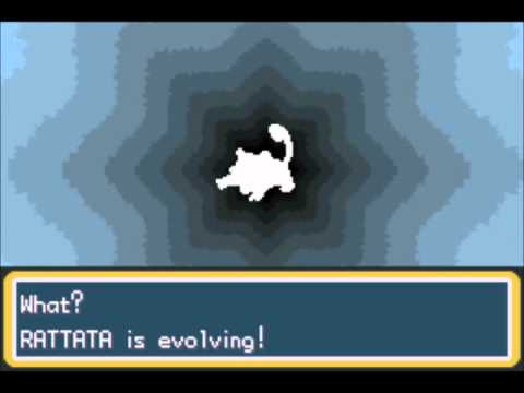 What level does rattata learn moves fire red