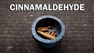 How to extract Cinnamaldehyde from Cinnamon (Steam Distillation)