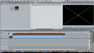 Video Editors (Final Cut and Adobe Premiere)