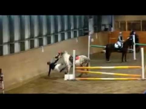 Bloopermovie of 2011 [Horses] [Riders falling off]