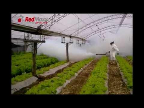 Máy phun khói Puls Fog - Cty Redmaxx