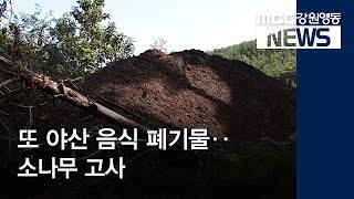 R)또 야산 음식물 폐기물 퇴비‥소나무 고사