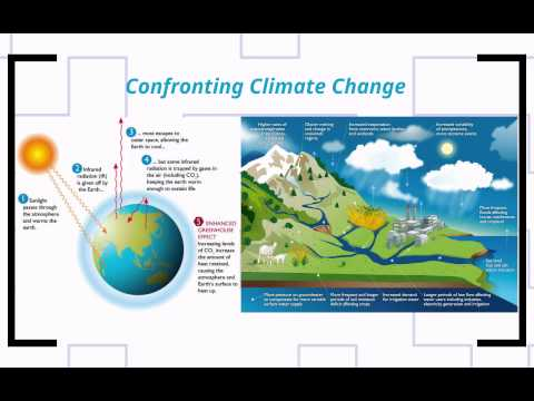 POS 273-Lecture 15: The Global Environment