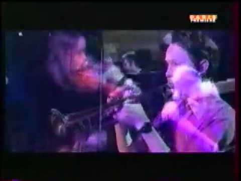 Belle & Sebastian Black Sessions 1998 Dog On Wheels
