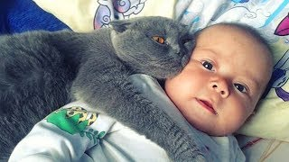 Baby and Cat are Best Friends 😽👶 Funny Pets Videos