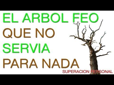 Superacion Personal y Autoestima - Motivacion en Español