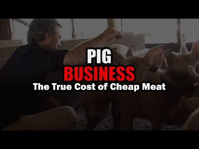Pig Business - 13min Short