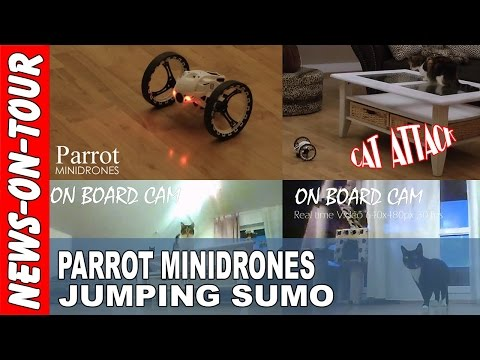 Parrot MINIDRONES | JUMPING SUMO | Live Video: Cat Attack Machine |  Original Cam Video Source