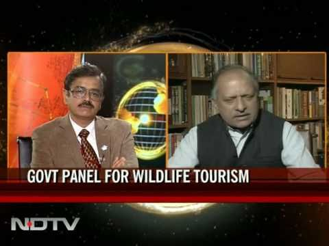 Wildlife tourism: Govt sets up panel