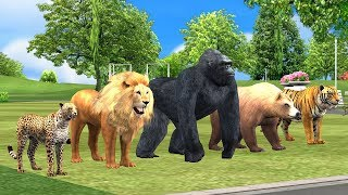 Learn Wild animals finger family song for kids,Gorilla,lion,tiger,3d nursery rhymes,ArcusNMediakidz