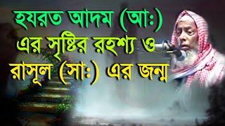 nasirullah chadpuri waj || হযরত আদম (আ:) এর সৃষ্টির রহশ্য ও রাসূল (সা:) এর জন্ম নিয়ে আলোচনা সহ আরো