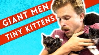 Giant Men Meet Tiny Kittens
