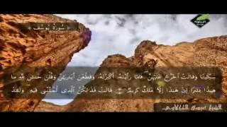 تلاوة مباركة لسورة يوسف كاملة مع الشيخ عيسى الحجلاوي