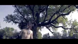 FUROR GALLICO - Song Of The Earth