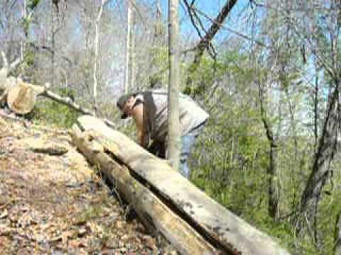 DYI lumber how to split a tree.