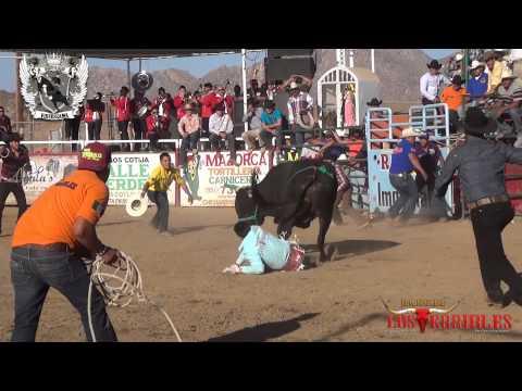 2-torazos-de-rancho-los-terribles.html