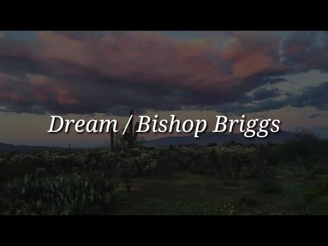 Bishop Briggs - Dream (Lyrics)