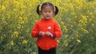 My son zhu xu-yang